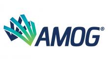 AMOG_Consulting_logo